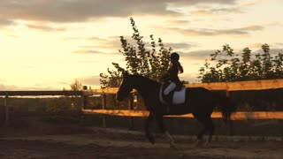 Silhouette of a girl riding a horse at sunset