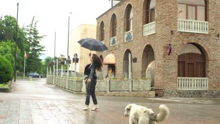 young woman fooling around in the rain with the dog