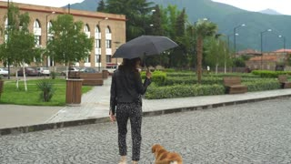 young woman with umbrella walks with the dog