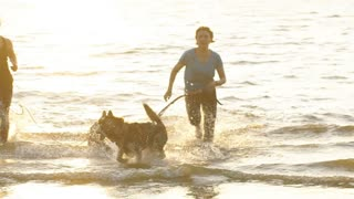 young fitness couple running on beach with siberian husky dog during sunrise or sunset