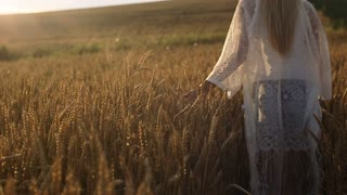 A cute younger girl walks through a golden yellow wheat field
