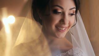 beautiful bride under wedding veil portrait. close up of smilie face