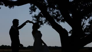 Bride and Groom under a Large Tree