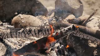 Cooking meat on the fire
