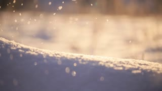shallow snow falling, shallow depth of field