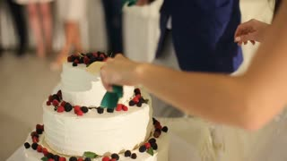 The bride and groom cut the wedding cake knife , can see the newlyweds hands bride cuts the cake, the groom helps