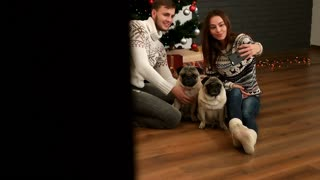 Beatiful young couple in love smiling and making selfie with couple of pug dog on the floor near the Christmas tree. View behined the wall.