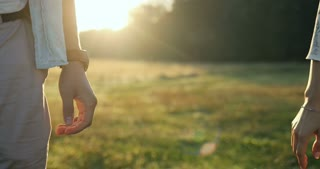 Close up of the male and female hands taking each other and holding on the beautiful lawn and sunset background.