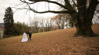Wedding Bride and Groom walking at the park near beautiful old castle.