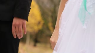 Wedding couple holding hands while walking in the park. Close up