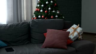 Young attractive happy woman coming to the living room, sitting on sofa with gift and start using tablet on Christmas tree background.