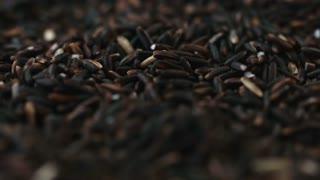 Background of black organic cereal salt sunflower seeds.
