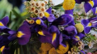 Beautiful plants of ianthine color.