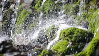 Close up of foaming river water and drops on green stones with moss