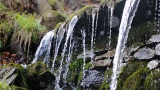 Close up of small waterfall and green plants in nature