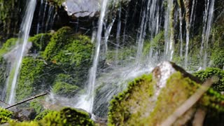Close up of spring water as it falls and dribbles on green moss