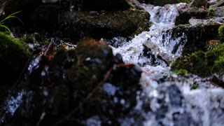 Close up on pure fresh rushing water in forest in springtime or summertime.