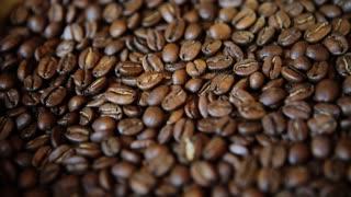 coffee beans on rotating stand closeup