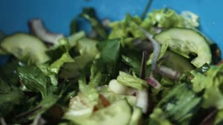 Delicious vegetable salad made of fresh tasty green cucumbers, lettuce leaves, red onion and tomatos , treated with salt.