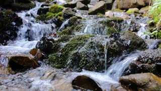 Fresh water flowing over green and wet mossy stones, close up