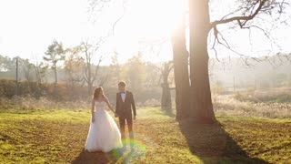 Groom and his beautiful bride walk on the field in sunset back light holding hands  Overall plan.  shot in slow motion  close up