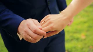 ladybug on hands  Wedding shot in slow motion  close up