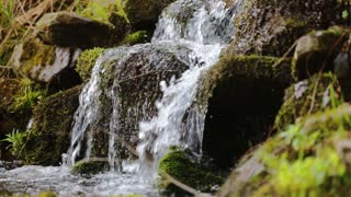 Pure fresh water waterfall in forest with stones and rocks covered by moss
