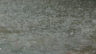 Rain Drops Fall Into Puddle Creating Water Ripples