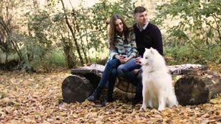 Beautiful white samoyed dog with family background in autumn park