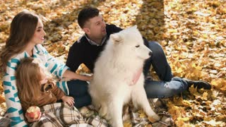 Happy young family with their daughter spending time outdoor in the autumn park with white somoyed dog. Picnic family time