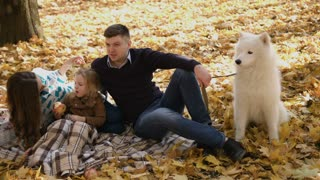 Happy young family with white somoyed dog spending time outdoor in the autumn park. caressing dog