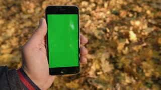 Man's hands holding smartphone with green screen against background of beautiful autumn leaves. Close-up video. Chroma key