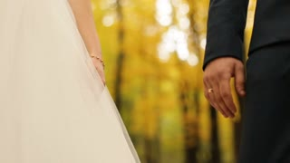 Wedding couple holding hands while walking in the autmn park. slow motion