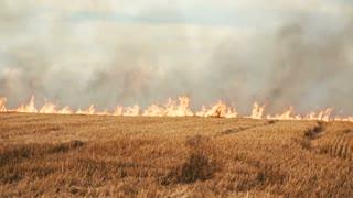 Burning smoky field
