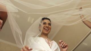 Wedding Bride Fun with Veil