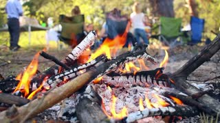 Bonfire in camping. Picnic in forest. People having fun at nature. Campfire in camp. Adults and children relax on picnic. Wooden campfire. Picnic concept. Preparing coal for outdoor barbecue party