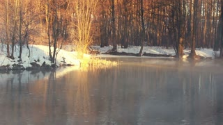Fog over forest river in winter. Mist over winter river. River in winter forest. Winter landscape. Golden colored forest. Sunlight in winter forest. Cold weather in winter morning. Misty morning