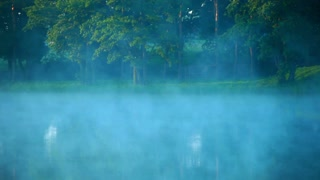 Mist over lake in forest. Fog over water surface. Foggy morning at forest lake. Morning mist over forest river. Dawn at forest lake. Green trees on riverbank