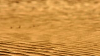 Golden sand dunes macro. Desert sand closeup. Orange sand dunes. Sand background. Desert sand dunes close up. Wave pattern on sand in desert