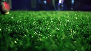 Green grass. Closeup. Lawn close up. Grass background. Green grass soccer field. Trimmed grass on meadow at night. Panning on grass field at park. Green background. Macro shot of lawn grass at night