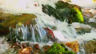 Powerful flow of water flowing over brown, orange and red stones with green moss