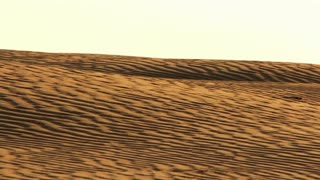 Sahara desert sand dunes with wave pattern. Natural sand waves in desert. Desert waves on sand. Desert landscape with sand waves. Desert horizon. Golden wave pattern on sand