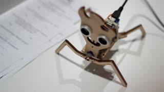 Spider robot. Funny robot toy spider. Mechanical animal. Testing robotic spider. Robotic technology concept. Automated robot toy. Funny robotic toy. Spider toy robot