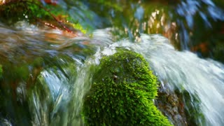 Steam of water flows over green moss on stone