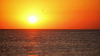 Fast sea sunset time lapse. Sun sets behind sea horizon. Golden sunlight reflection on water at sunset. Extreme sports at sea sunset timelapse. Surf. Windsurfing. Kite. Jet. Sun setting behind horizon