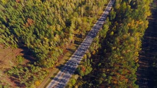 Aerial highway at forest. Aerial view empty road in forest landscape. Straight road through forest. Aerial landscape of country road between trees. Aerial road trees. Forest highway trees