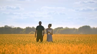 Agriculture engineer walking with female student in wheat field at summer. Agricultural research. Female journalist interviewing agro business man