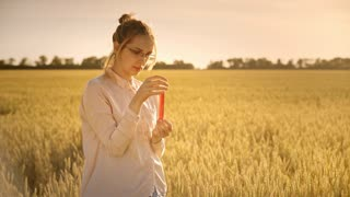 Agriculture science researcher on wheat field. Woman scientist with test tube doing research outdoor. Agriculture research experiment