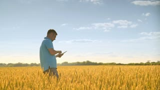 Agriculture scientist with tablet working on field landscape. Agricultural science worker using tablet. Agriculture research in harvest field. Agro business concept