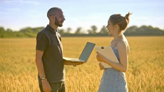 Agro researchers analyzing wheat harvest. Farmer with laptop speaking with agro scientist in wheat field. Agribusiness people check quality of wheat ears at summer